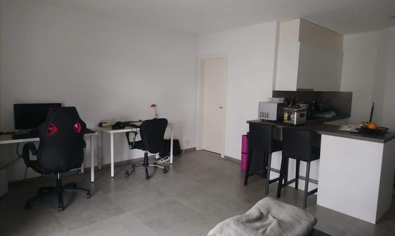 Joli appartement 1.5 pièces dans nouvelle construction proche de Lausanne (2)