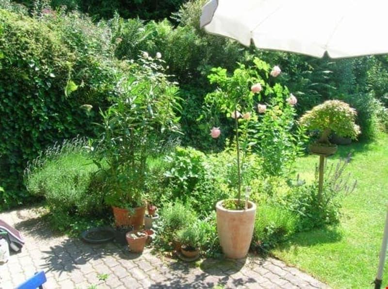 Einfamilienhaus mit Gartenoase