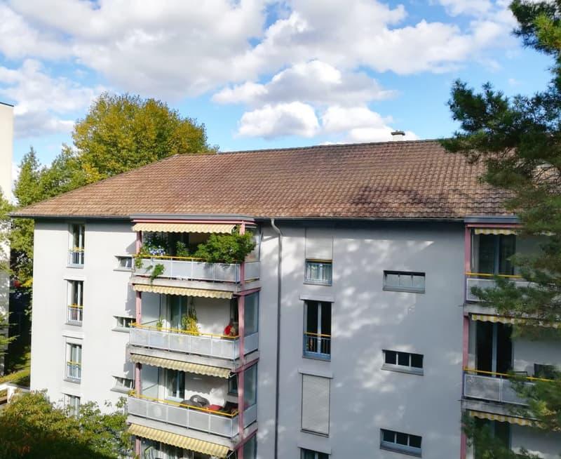 """Grosszügige 3.5-Zimmerwohnung (114m) im Gellert am """"Dalbendych"""" (1)"""