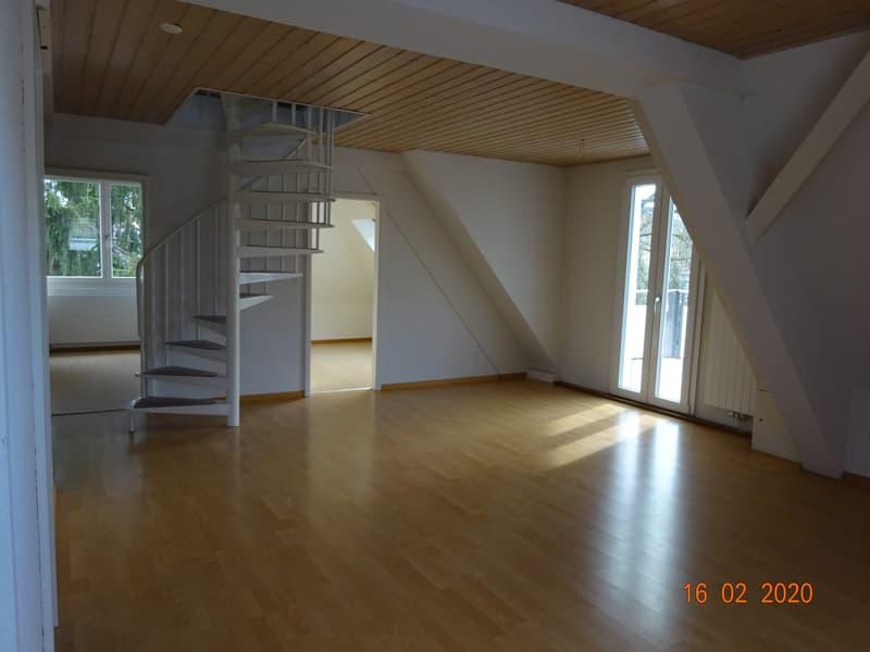 Sonnige 3 1/2 Zimmer Dachwohnung (4)