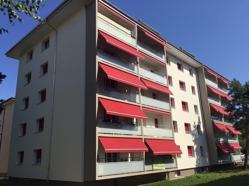 Appartement, 3.0 pièce(s)