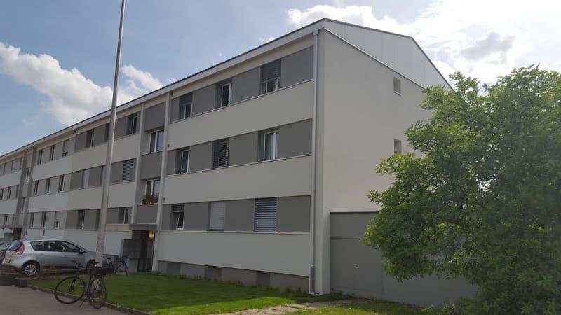 ruhige und zentrale 1.0-Zimmer-Wohnung