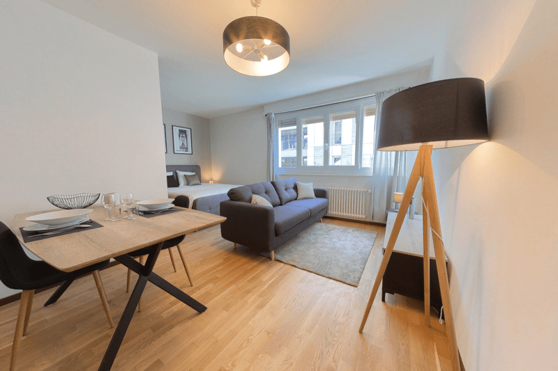Newly renovated Studios, close to Cornavin train station