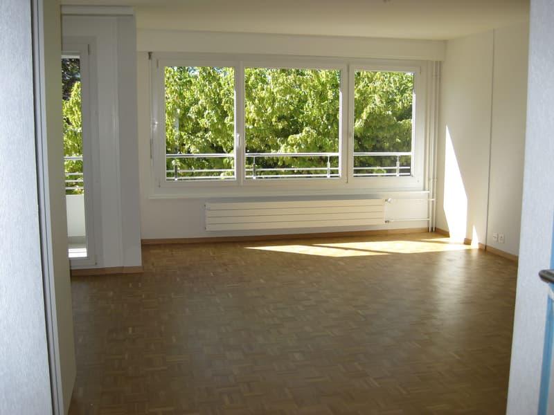 Studio avec grand balcon