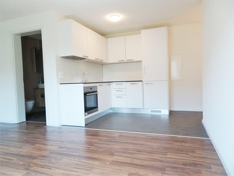 Topmoderne 2-Zimmer Wohnung nach Kernsanierung in Niederlenz