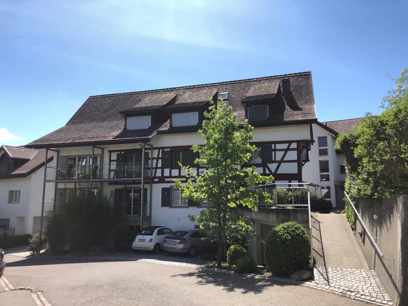 grosse, stilvolle Wohnung mit viel Charme und Rheinsicht