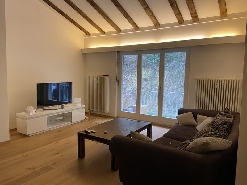 Attraktive 2.5 Zimmer Dachwohnung