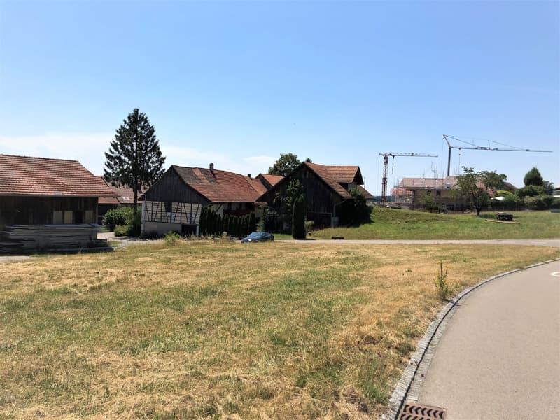 Grundstück Neubauprojekt mit 5.5-Zi.-EFH an zentraler, ruhiger Lage in Dettighofen-Pfyn