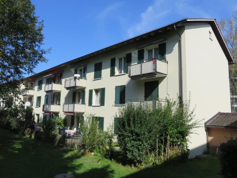 Neu renovierte sonnige 3-Zimmerwohnung mit Balkon