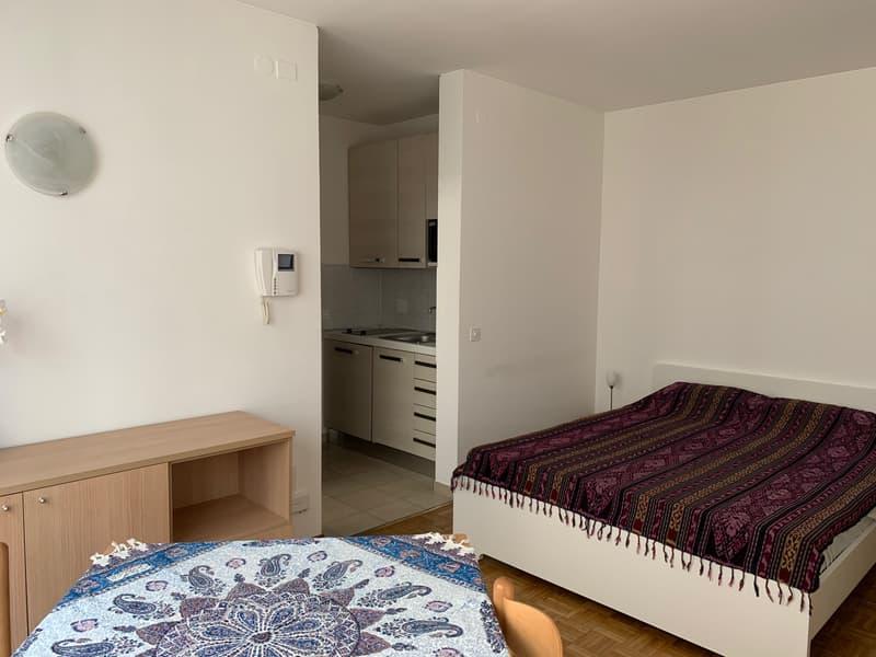 Appartamento arredato e completamente fornito