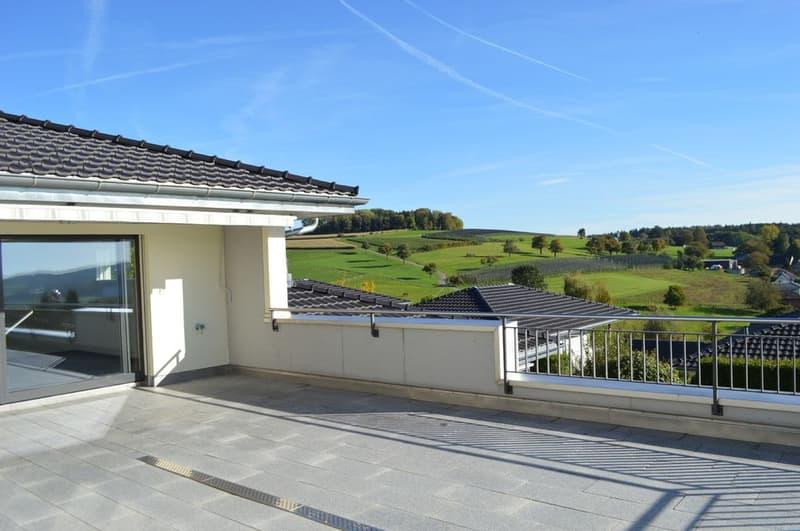 Weil Wohnen wertvoll ist 5 ½ Zi-Terrassenhaus an Toplage in Hägglingen