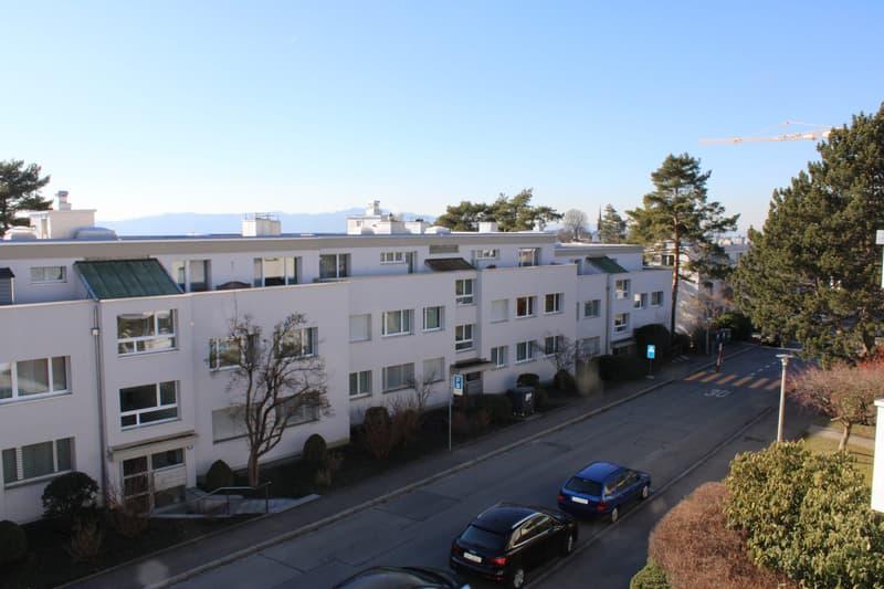helle, grosszügige Wohnung an ruhiger Quartierstrasse (2)