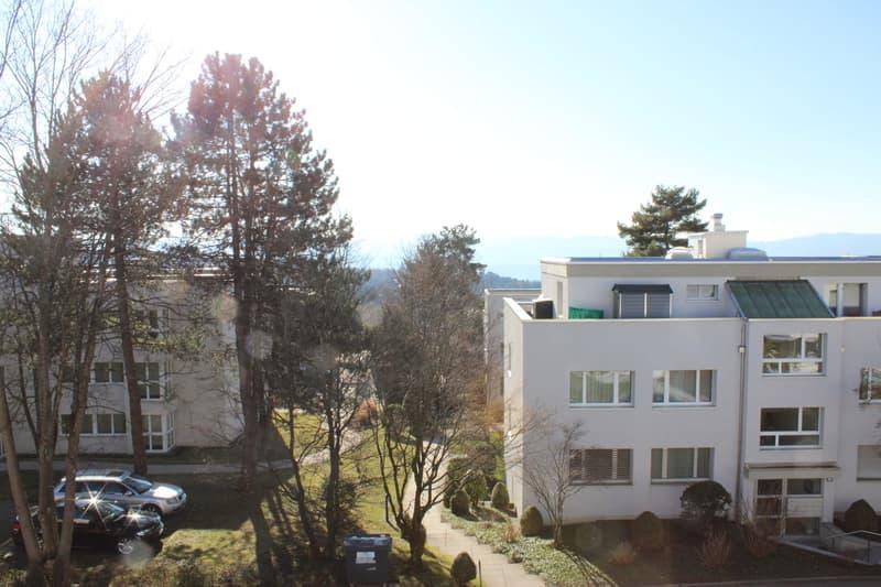 helle, grosszügige Wohnung an ruhiger Quartierstrasse (3)