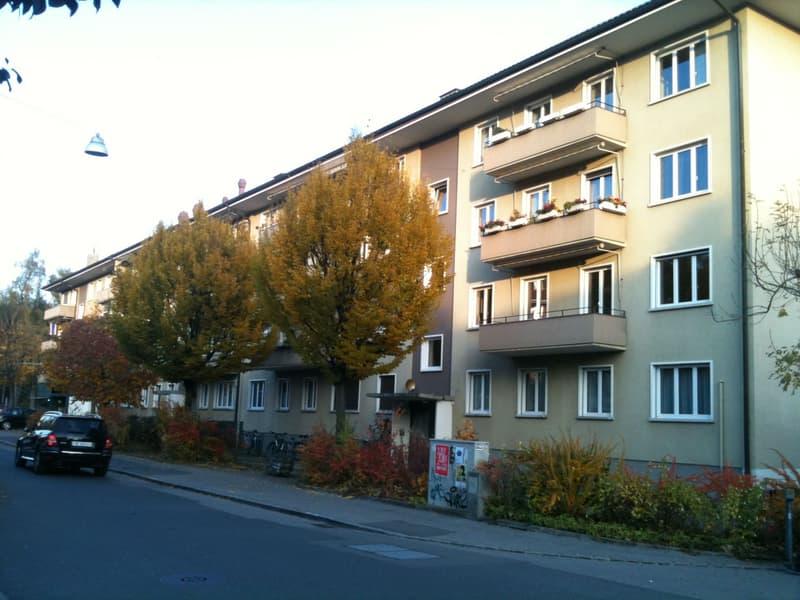 4.5 Zi-Wohnung im Länggass-Quartier