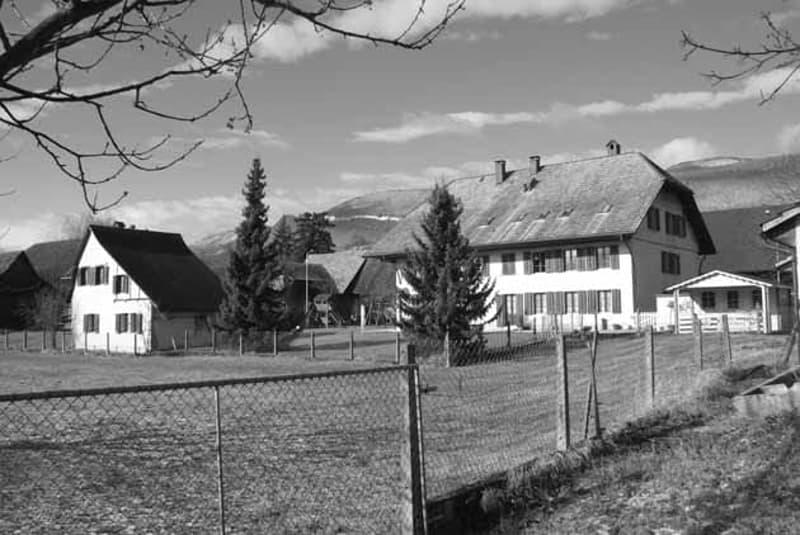 individuelles Wohnen in historischem 2 1/2 Zimmer EFH am Grünraum