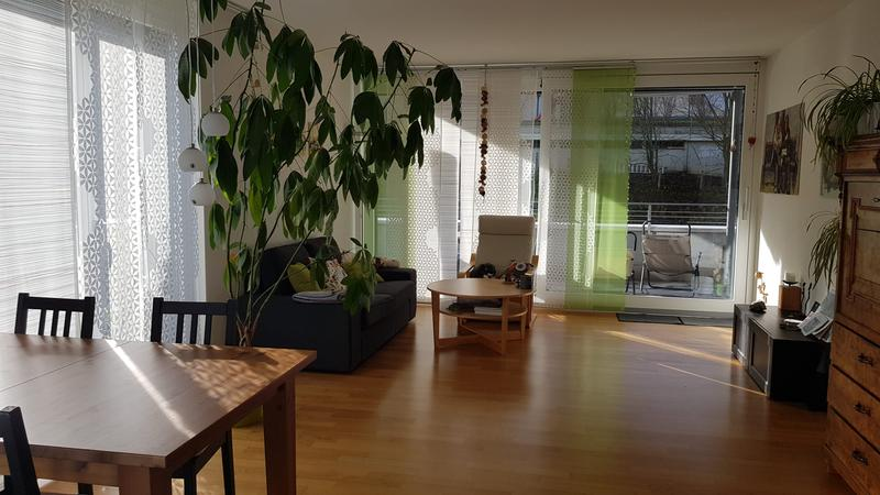 Helle 2.5 Zimmer Attikawohnung mit grosser Terrasse