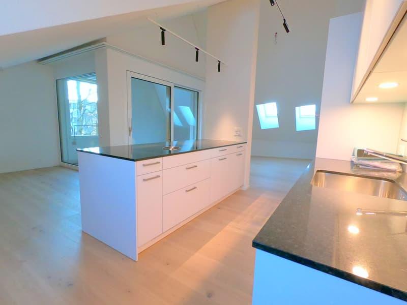 Stadtwohnung im modernen Neubau Wassergasse 53   Dachgeschoss (1)