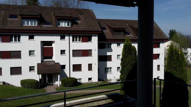 Schöne Wohnung mit grossem Balkon!