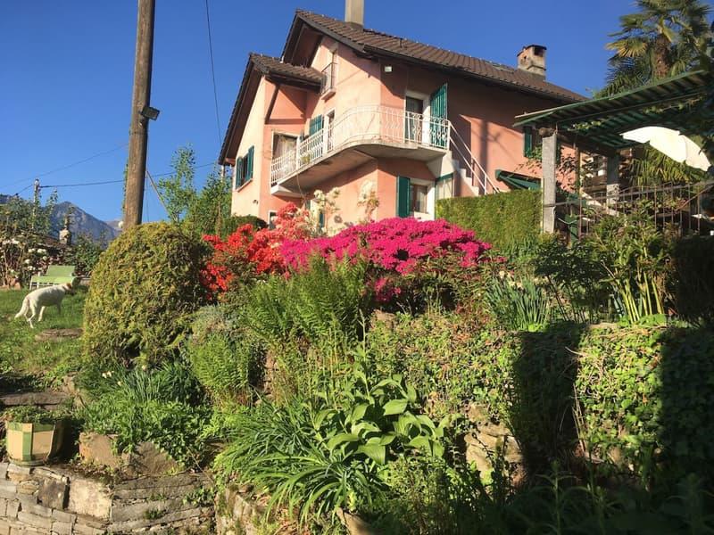 Wundervolles Tessinerhaus an idyllischer Lage