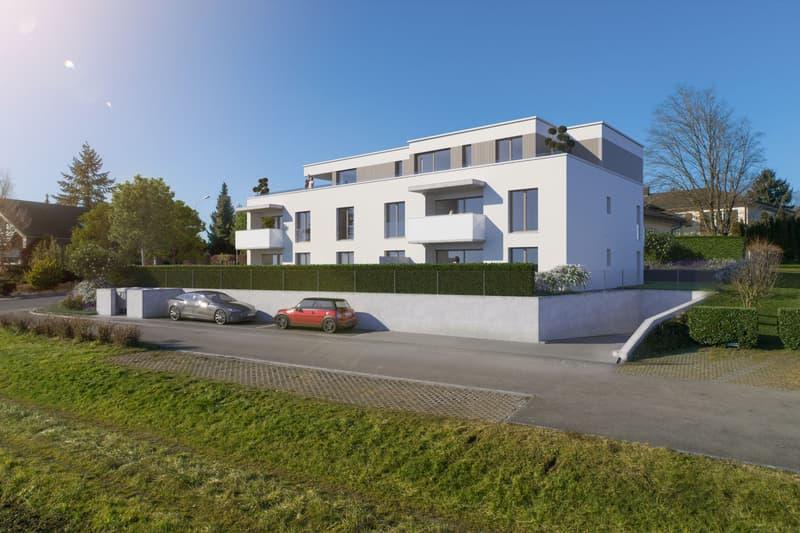 Modernes Neubauprojekt: 5.5-Zimmer-Attikawohnung mit traumhafter Terrasse
