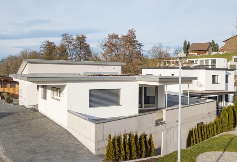 Neu erstelltes und modernes Terrassenhaus (Erstvermietung)