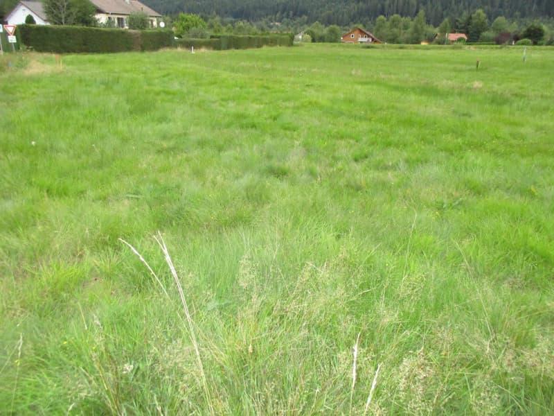 Terrain constructible au centre de Veyrier à un endroit très calme