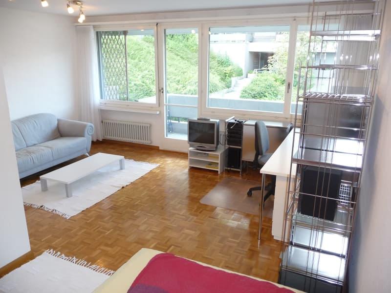 Schöne möblierte 1.5- Zimmer-Wohnung in Terrassenüberbauung am Fusse des Üetliberg/Modern furnished