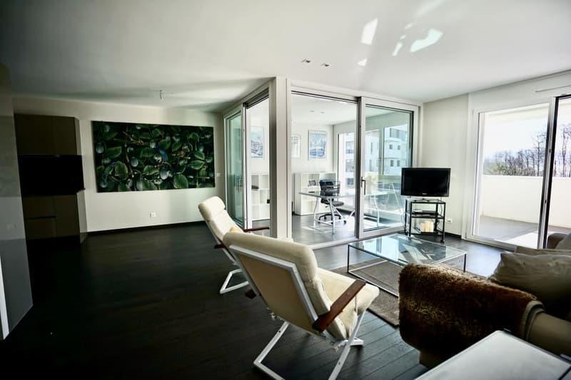 Bel appartement de 2,5 pièces avec vue