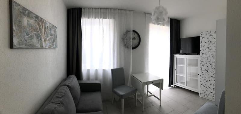 Neu erstellte, moderne 1 Zimmer Wohnung in historischem Gebäude