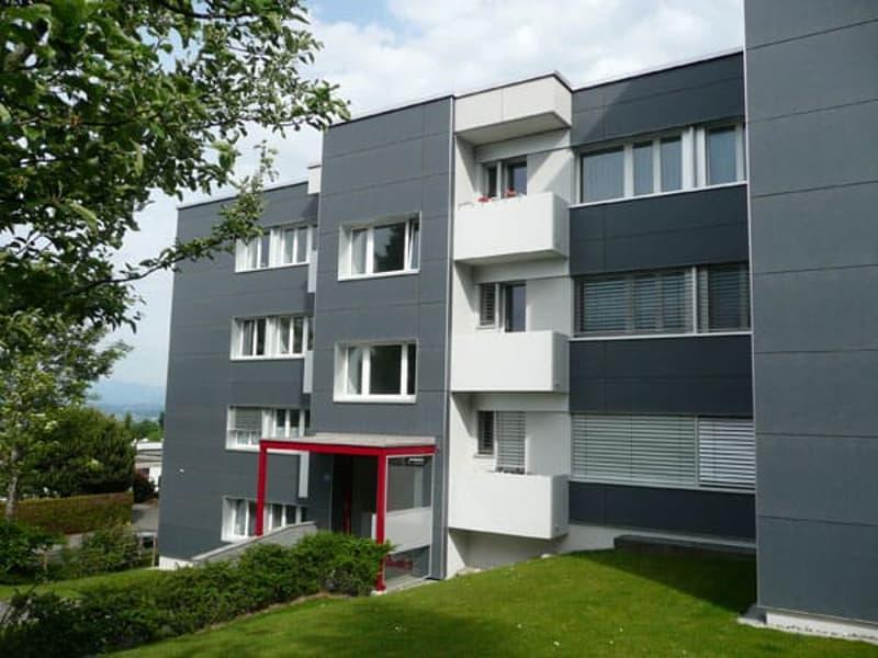 Wohnen mit Blick auf den Zürichsee mit schönem Sitzplatz