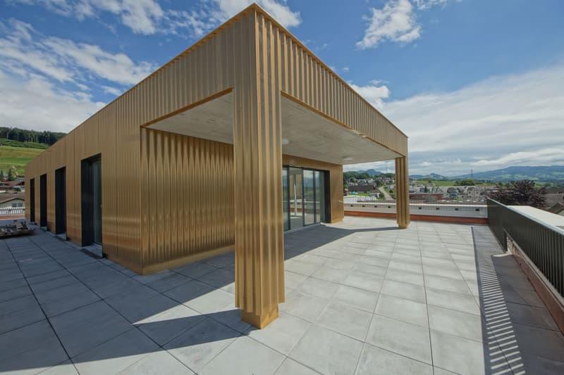 5 1/2 Zimmer Attikawohnung mit 145m2 Terrasse