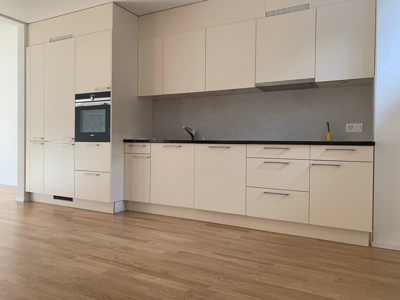 Erstbezug! 2.5 Zimmer-Wohnung im Luzerner Trendquartier (3)