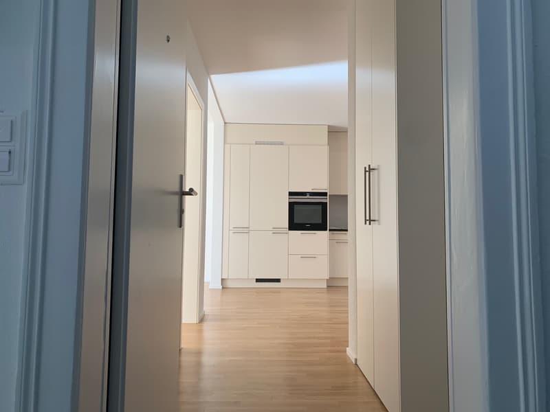 Erstbezug! 2.5 Zimmer-Wohnung im Luzerner Trendquartier (2)