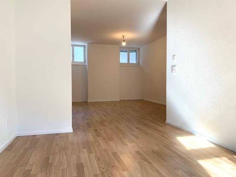 Erstbezug! 2.5 Zimmer-Wohnung im Luzerner Trendquartier (4)