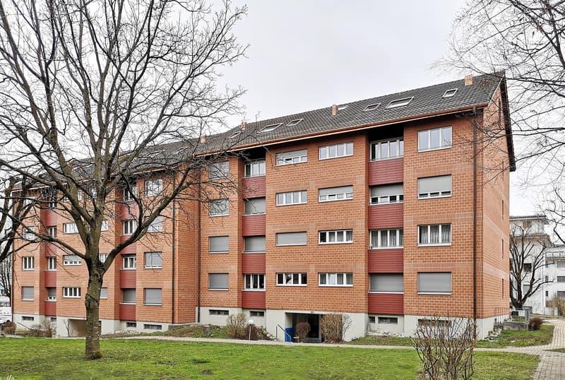 Gemütliche Neubau-Dachwohnung