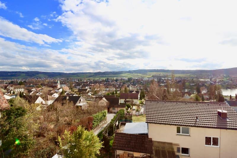 Herrlicher Ausblick zum Rhein, Altstadt und Landschaft (2)