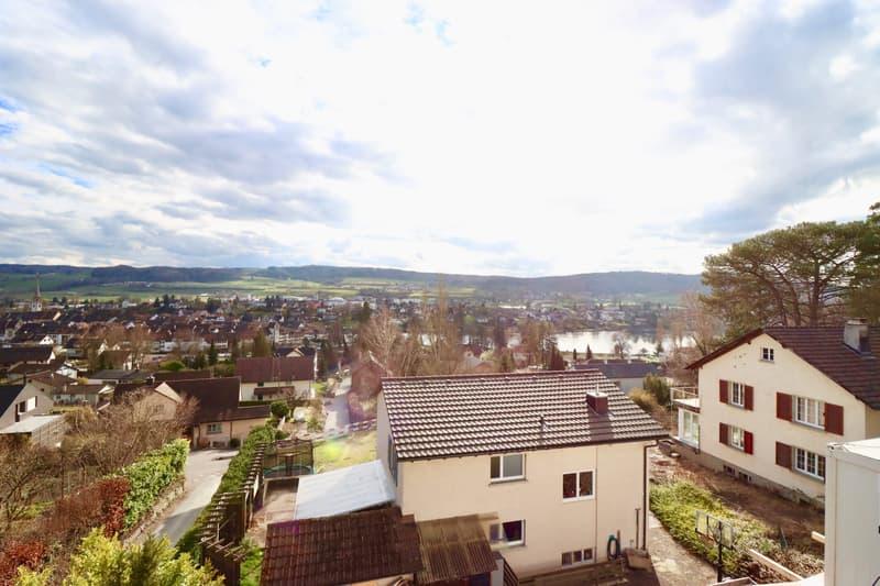Herrlicher Ausblick zum Rhein, Altstadt und Landschaft (1)
