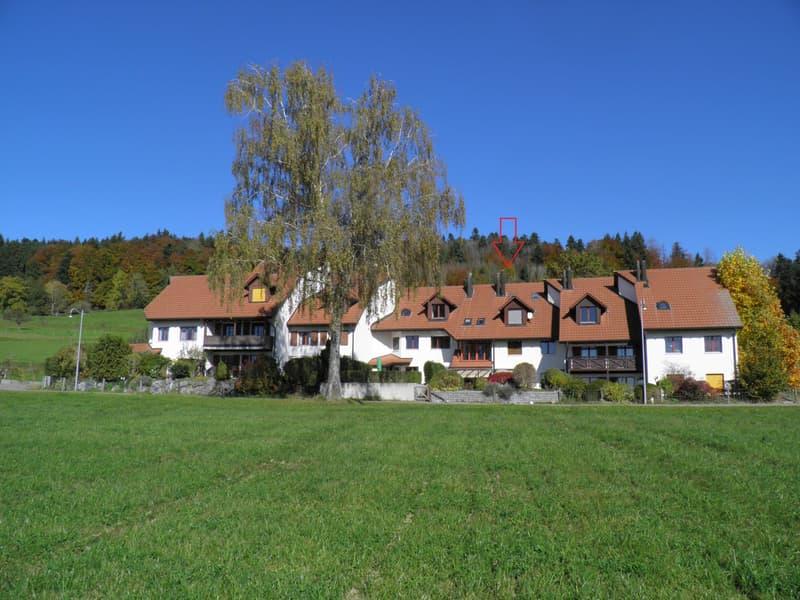 Traumhaftes 6.5 Zimmer Reiheneinfamilienhaus an Top Lage mit phantastischer Bergpanorama Sicht