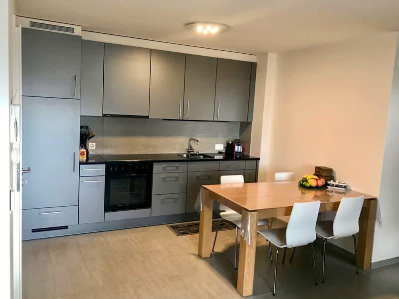 Appartement atypique de 70 m2 utiles avec vue sur le lac (1)