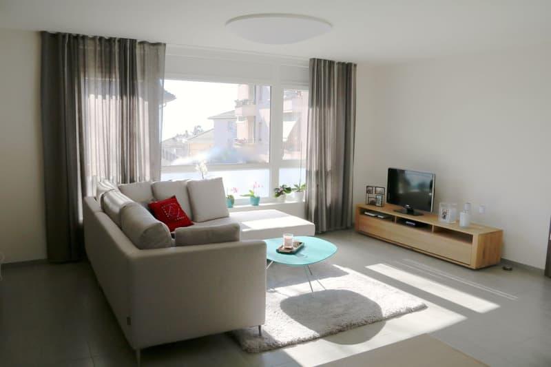 Appartement atypique de 70 m2 utiles avec vue sur le lac (3)