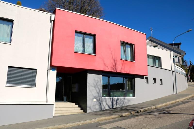 Appartement atypique de 70 m2 utiles avec vue sur le lac (4)