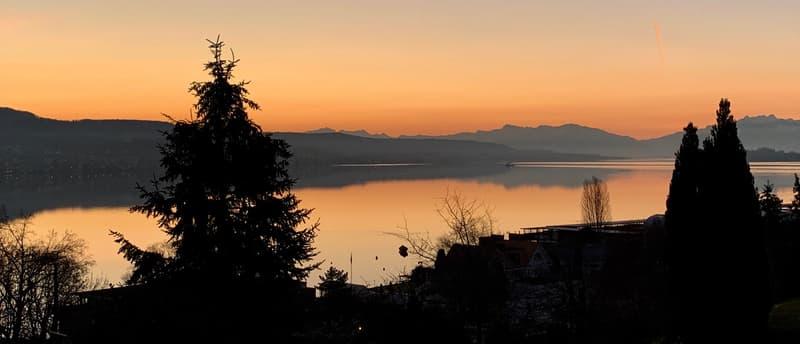 Morgenstimmung über dem Zürichsee