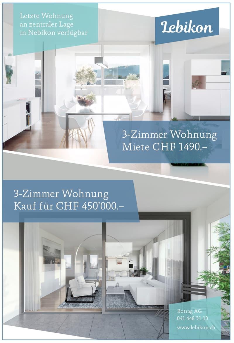 Letzte Gelegenheit - grosszügige 3-Zimmer Wohnung, top Standard