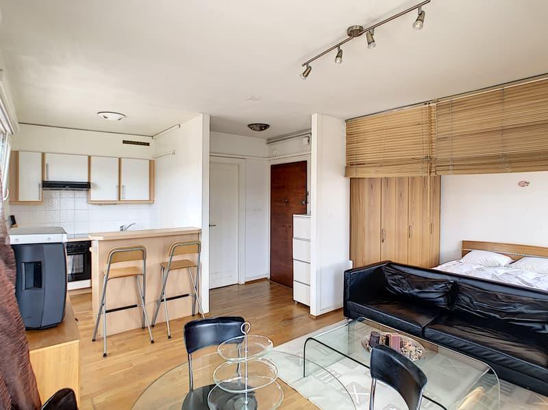 Studio meublé avec terrasse panoramique en plein centre ville (2)