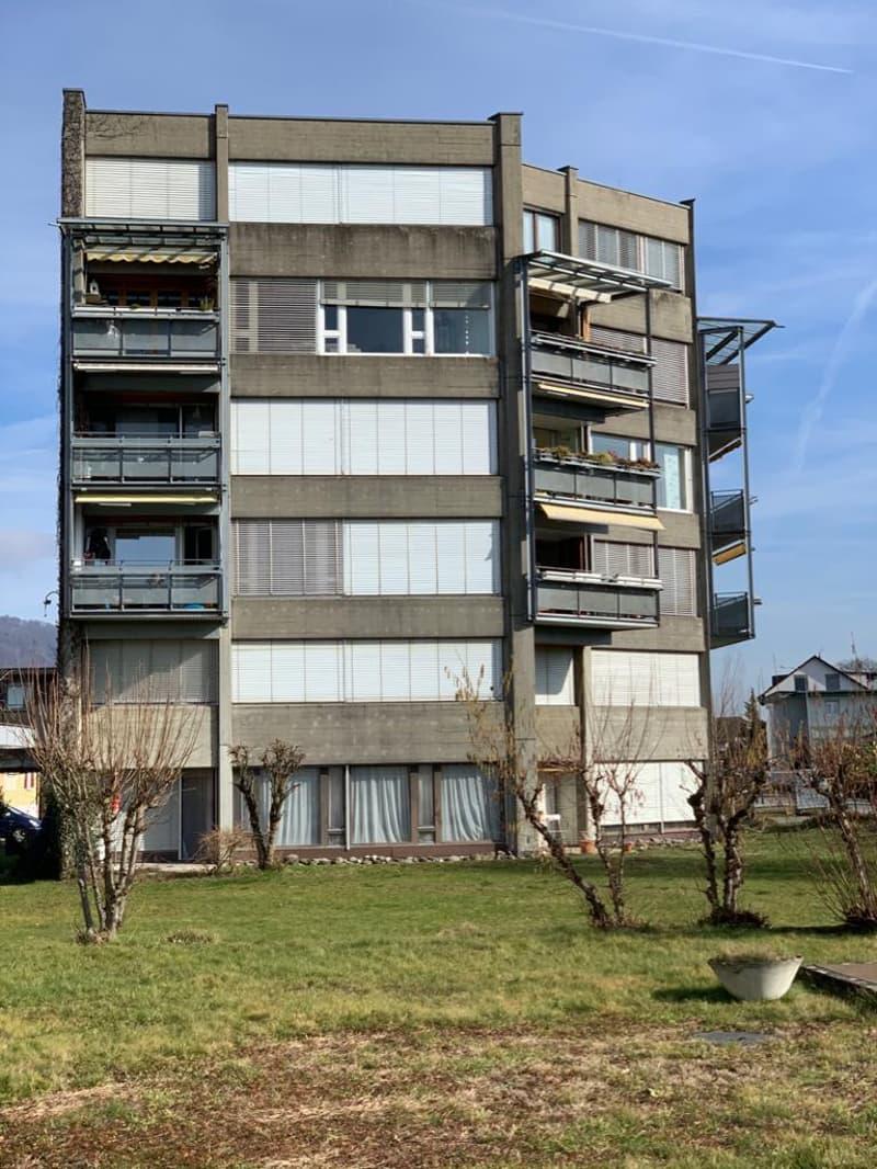originelle 1,5 Zi-Parterre-Wohnung (1)
