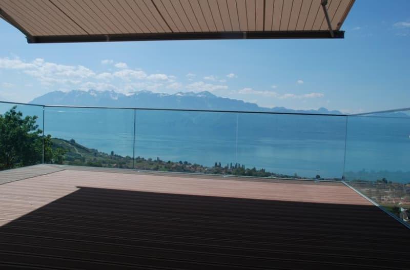 Luxueux contemporain avec terrasse panoramique