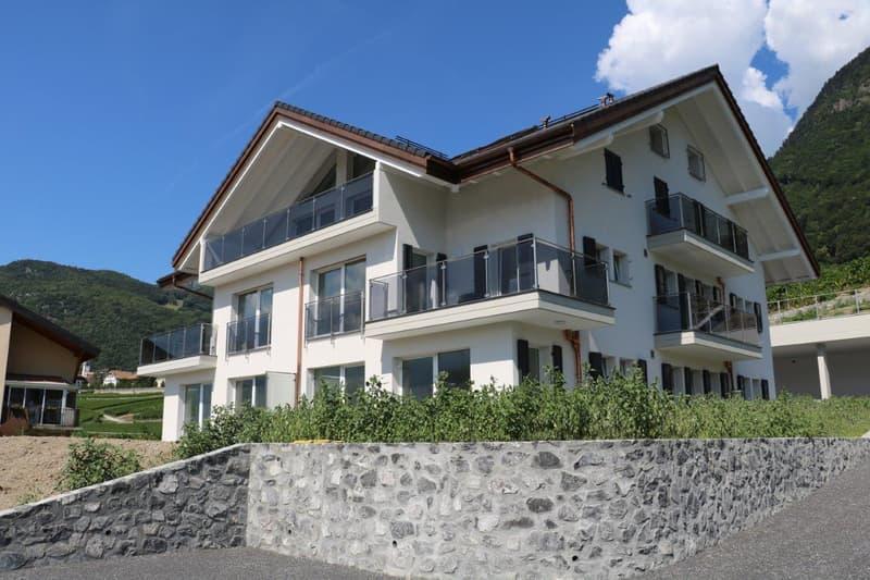 1 Appartement neuf de 8.5 pièces avec buanderie et cave privatives et 2 places de parking en sus (1)