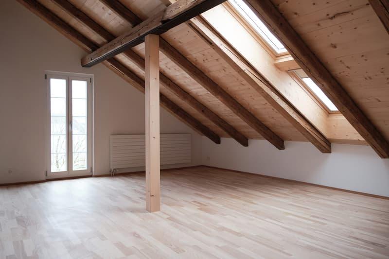 Zentrale 2.5 Zimmer Dachwohnung in Kernsaniertem Gebäude - Erstvermietung