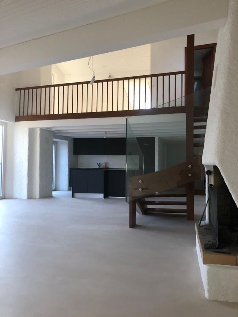Lavaux - Duplex de 3 pièces/115 m2 (3)
