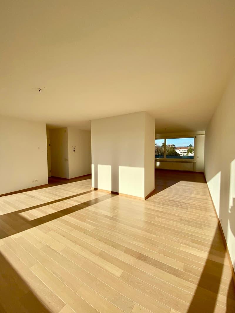 An der Engelgasse 85 in Basel eine grosse sonnige 5-Zimmer Dachwohnung mit Aussicht zu vermieten (3)